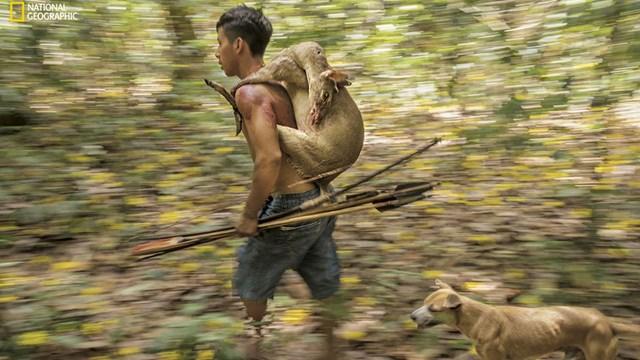 Chiến lợi phẩm từ một cuộc đi săn.Nguồn: National Geographic.