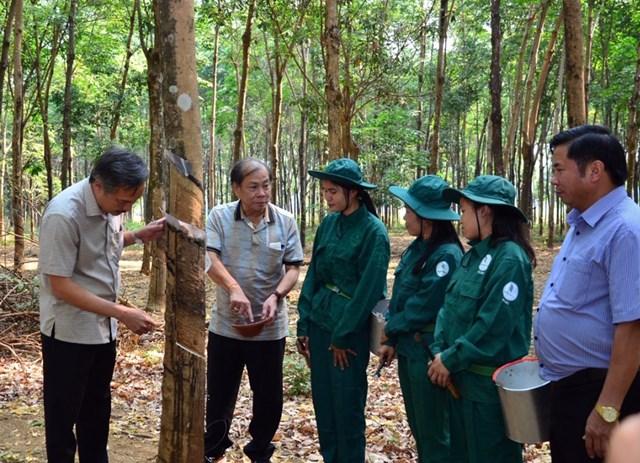 Sự gần gũi, chia sẻ giữa lãnh đạo Công ty và người lao động chính là yếu tố quan trọng làm nên thành công của Công ty Cao su Việt Lào.