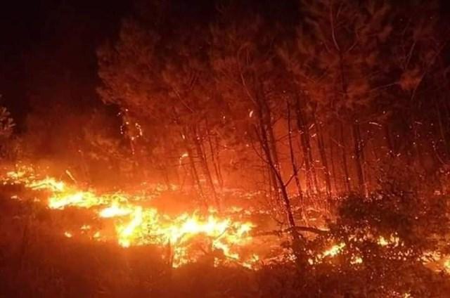 Do gió Lào thổi mạnh nên ngọn lửa đã bùng phát lây lan nhanh chóng xuống gần khu vực xóm 5 xã Diễn An.