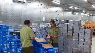 Hàng chục ngàn mặt hàng với chủng loại, nhãn mác nổi tiếng được phát hiện, bắt giữ tại kho hàng của Trần Thành Phú.
