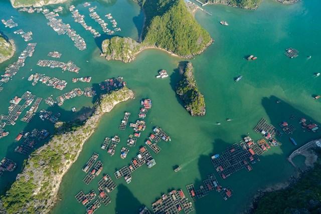 Vịnh Lan Hạ (Hải Phòng) là địa điểm du lịch hút khách trong thời gian gần đây.