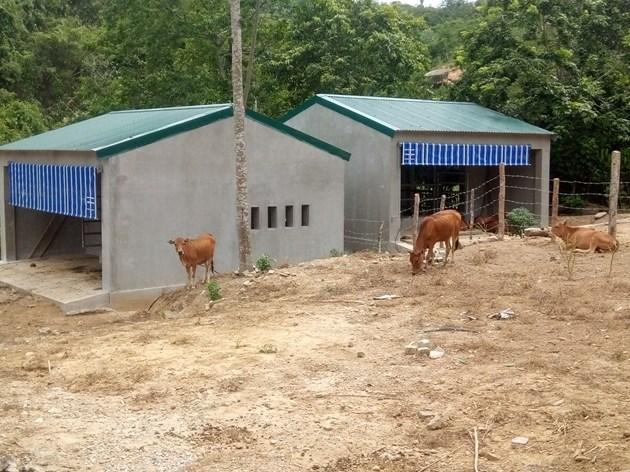 Tại đề án, việc phân bổ gần 13 tỷ đồng xây dựng 67 chuồng bò (trong đó có nhiều chuồng trị giá gần 260 triệu đồng/căn) bị người dân phản ứng là lãng phí.