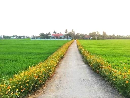 Thanh Hóa: Bản Vịn xây dựng nông thôn mới - Ảnh 1