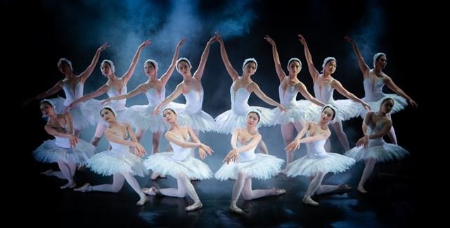 """Một cảnh trong vở ballet """"Hồ thiên nga""""."""