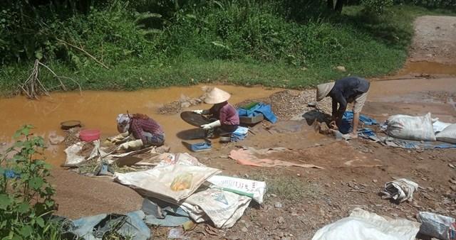 Nhiều người dân đãi quặng lấy vàng.