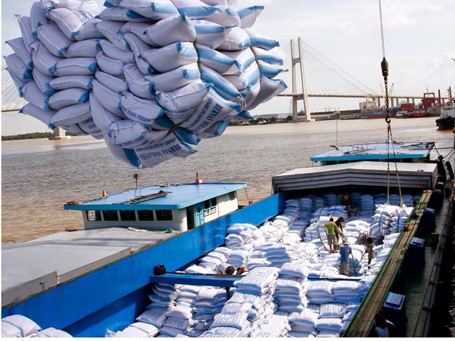 Nhiều tín hiệu vui từ xuất khẩu gạo.