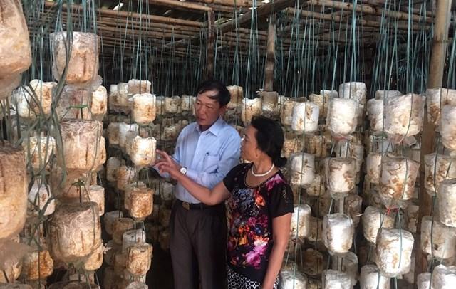 Hướng dẫn người dân kỹ thuật trồng nấm để vươn lên thoát nghèo.