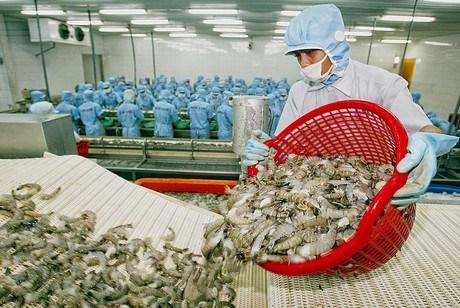 Thủy sản xuất khẩu có số lượng đơn hàng tăng mạnh những tháng cuối năm.
